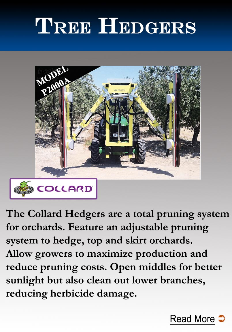 Collard Tree Hedger